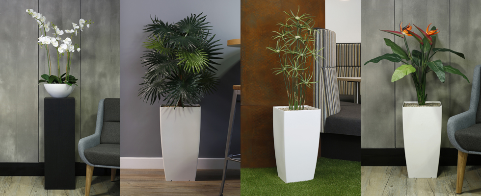 How to order Replica Plants from Vantage